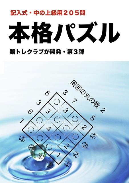 h.3.1jpeg.jpg